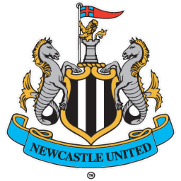 Newcastle United FIFA 14 Career Mode